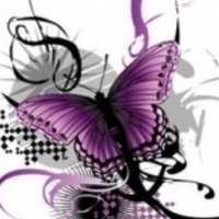 Large_square_purple_butterfly_1243750171
