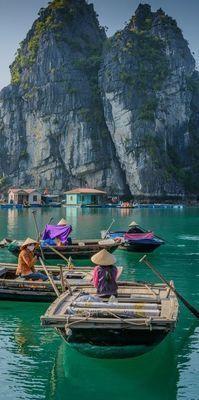 Medium vietnam