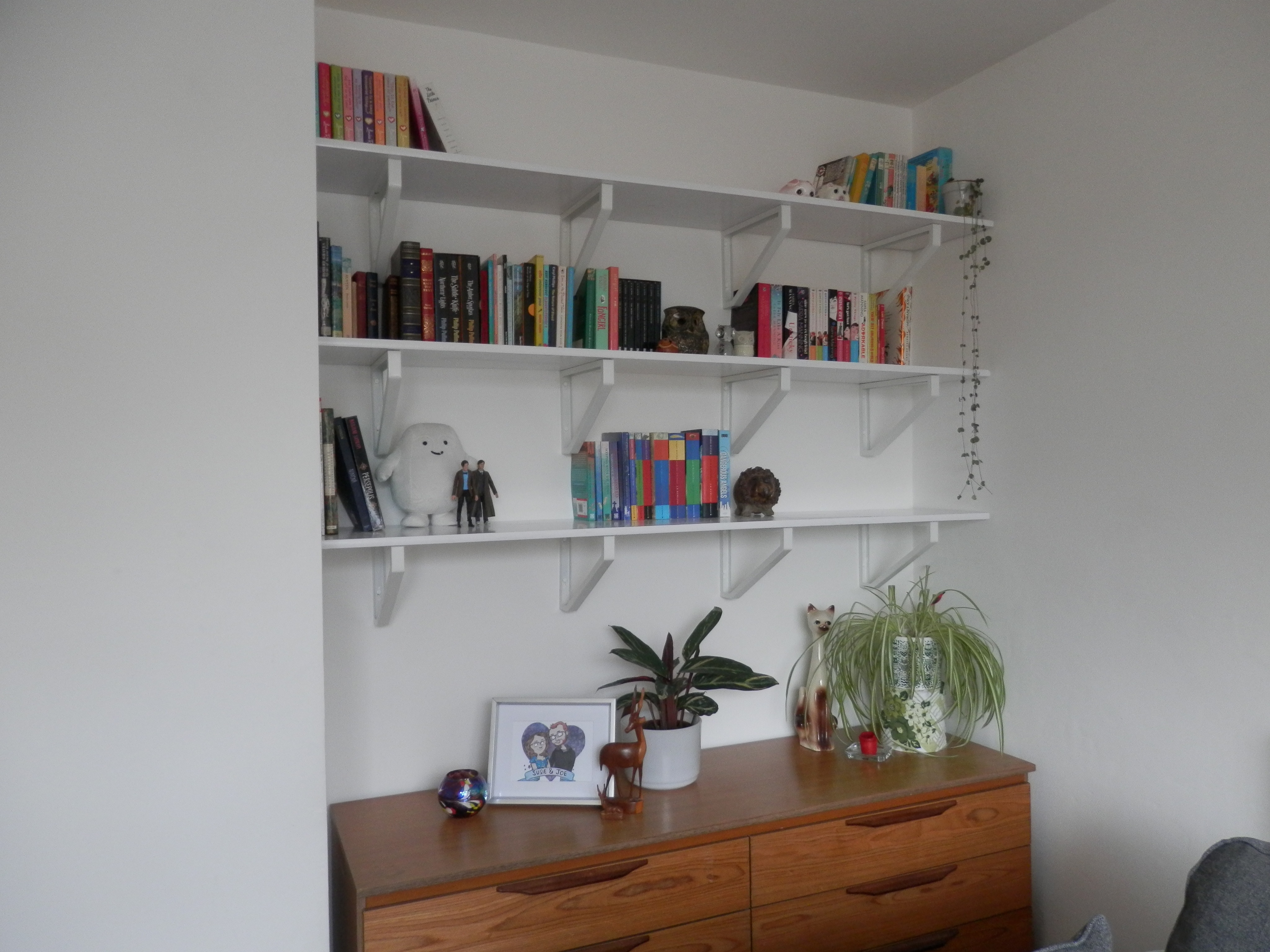 Wonderful image of shelves organised alphabetically i m waiting for shelves to be put up  with #6B412A color and 4096x3072 pixels