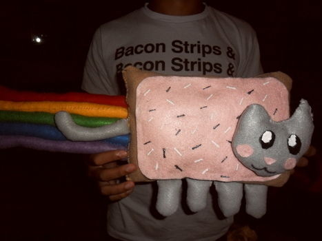 .  Make a cat plushie in under 180 minutes by sewing Inspired by creatures, nyan cat, and nyan cat. Version posted by BreatheEasyk. Difficulty: Simple. Cost: Cheap.