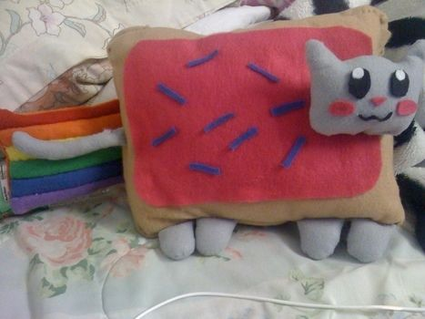 .  Make a cat plushie in under 180 minutes Inspired by creatures, kawaii, and nyan cat. Version posted by christina . Difficulty: 3/5. Cost: 3/5.