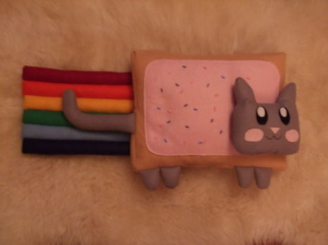 .  Make a cat plushie in under 180 minutes by sewing Inspired by nyan cat and nyan cat. Version posted by . Difficulty: 3/5. Cost: 3/5.