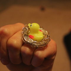 Bird In A Nest Ring