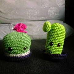 1 Cactus, 2 Cactus