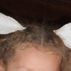 Dear Deer Ears