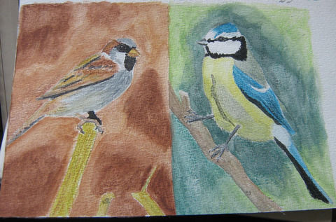 After years without drawing, I'm so pleased with these! .  Paint a piece of watercolor art by creating, drawing, and decorating with paper, paper, and paint brush. Inspired by birds. Creation posted by Maladignia. Difficulty: 4/5. Cost: 3/5.