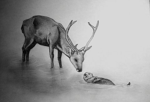 Seregil and Alec -animal version- drawing. .  Draw & Paint a piece of animal art in under 30 minutes by drawing with paper, pencil, and eraser. Creation posted by Nowsy. Difficulty: Simple. Cost: No cost.