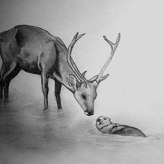 The Stag And The Otter