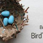 Brown Bag Bird's Nest