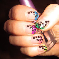Nail Art, Coloured Tips With Leopard Print