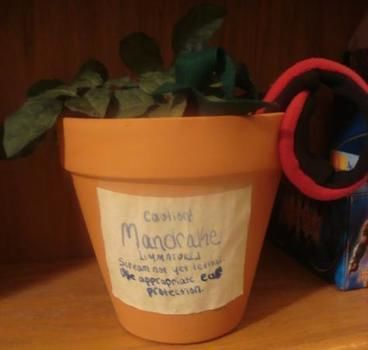 Remember your ear protection! .  Make a Harry Potter plushie in under 70 minutes by sewing with fabric, fabric, and thread. Inspired by harry potter and plants. Creation posted by Becky H. Difficulty: Simple. Cost: Cheap.