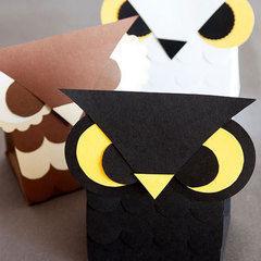 Owl Treat Boxes