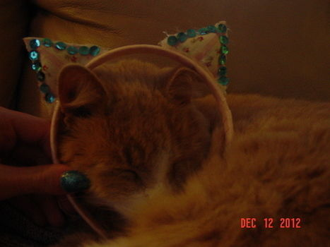 A kitten headband that never goes out of style .  Free tutorial with pictures on how to make an ear / horn in under 30 minutes by sewing and sewing with fabric, thread, and needle. Inspired by cats and clothes & accessories. How To posted by PineconePrincess. Difficulty: Simple. Cost: Absolutley free. Steps: 7
