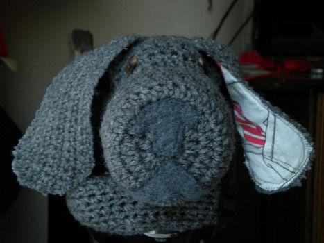 A camera cosy to disguise your DSLR camera .  Stitch a knit or crochet pouch in under 60 minutes by sewing and crocheting with thread, yarn, and sewing machine. Creation posted by ZanyDays. Difficulty: Simple. Cost: No cost.