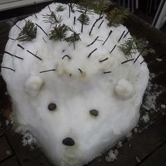 Snow Hedgehog :)