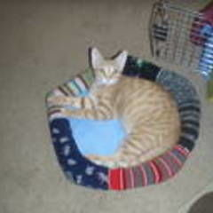 Sock Cat Bed