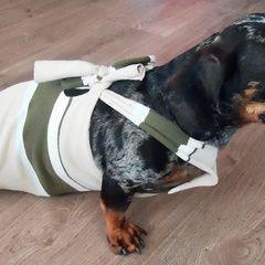 Paralyzed Weiner Dog Drag Bag