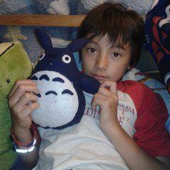 Totoro Plushie By Cheek And Stitch