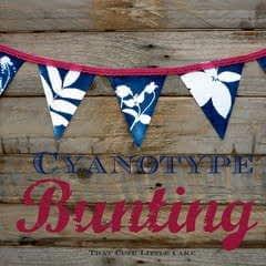 Cyanotype Bunting