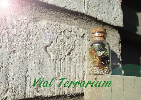 Nature in a bottle .  Free tutorial with pictures on how to make a terrarium in under 60 minutes using kit, moss, and sand. Inspired by garden. How To posted by Ashinezz.  in the Home + DIY section Difficulty: Easy. Cost: Cheap. Steps: 5