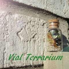 Vial Terrarium