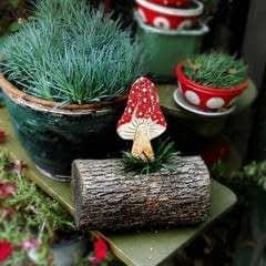 Clay Mushroom Tutorial