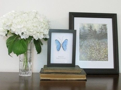 Create your own butterfly art! .  Free tutorial with pictures on how to make a taxidermy mount in under 60 minutes by papercrafting with decoupage glue, string, and frame. Inspired by butterflies. How To posted by Jennifer T.  in the Art section Difficulty: Easy. Cost: No cost. Steps: 4