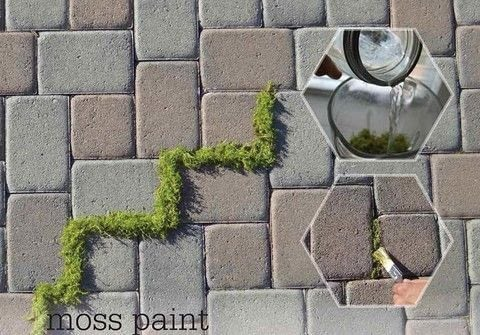 Cheap + Easy .  Free tutorial with pictures on how to make a garden decoration in under 5 minutes by decorating and gardening with moss, brush, and water. How To posted by Crafterella.  in the Home + DIY section Difficulty: Simple. Cost: Cheap. Steps: 2
