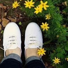Beaded Shoelaces