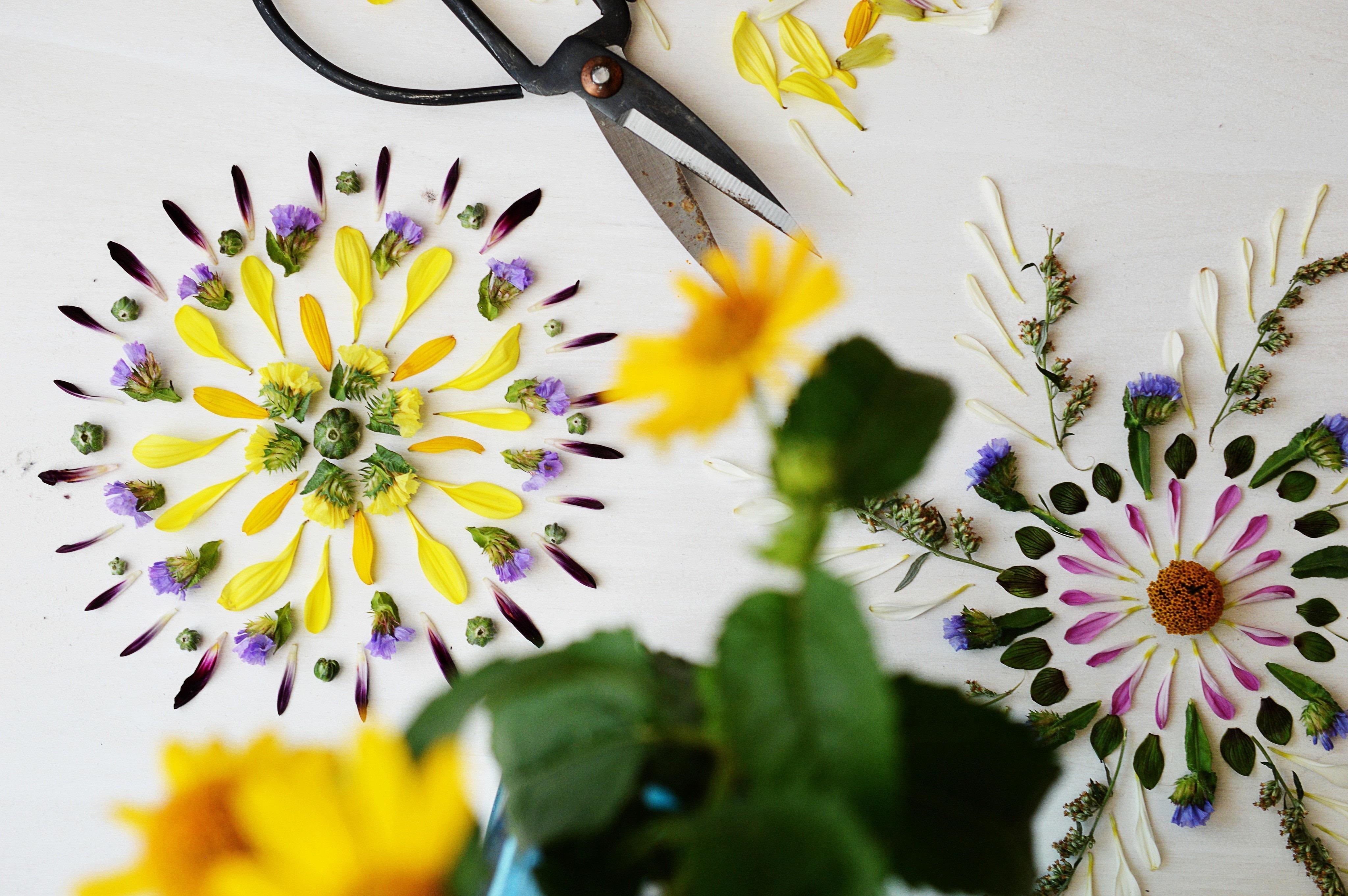 Flower Art, The art of Delmus Phelps