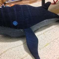 Jeans Whale