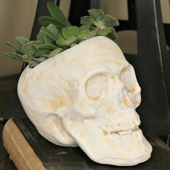 Make a spooky skull planter .  Free tutorial with pictures on how to make a vase, pot or planter in under 60 minutes by decorating, embellishing, and gardening with scissors, paintbrushes, and skull. How To posted by Mark Montano.  in the Decorating section Difficulty: Easy. Cost: Absolutley free. Steps: 2