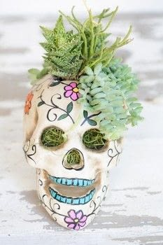 An easy centerpiece for Halloween! .  Free tutorial with pictures on how to make a vase, pot or planter in under 20 minutes by gardening with duct tape, knife, and moss. Inspired by skulls & skeletons. How To posted by Eden  P.  in the Decorating section Difficulty: Easy. Cost: Cheap. Steps: 5