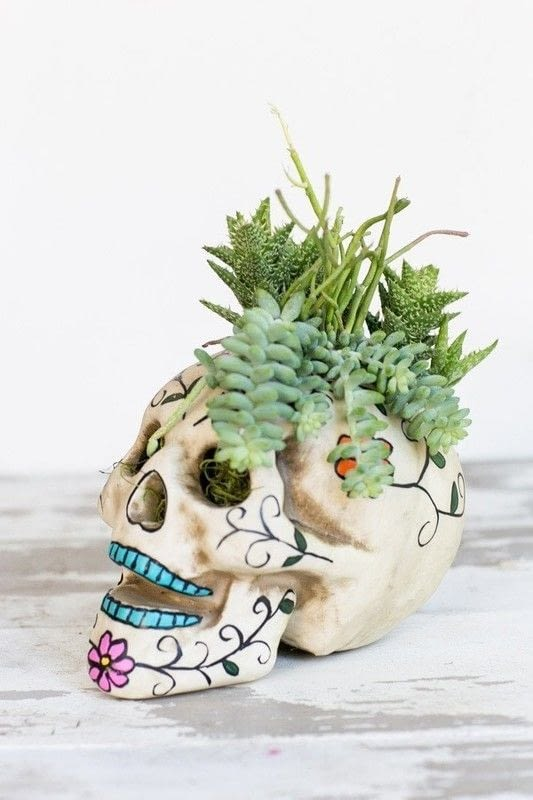 Easy Halloween Skull Centerpiece 183 How To Make A Vase Pot Or Planter 183 Decorating On Cut Out Keep