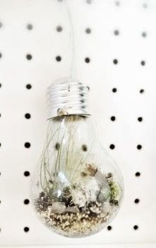 Make your own Eden Project inspired lightbulb terrarium .  Free tutorial with pictures on how to make a terrarium in under 45 minutes by decorating and gardening with lightbulb, pliers, and awl. How To posted by Cat Morley.  in the Home + DIY section Difficulty: Simple. Cost: Cheap. Steps: 14
