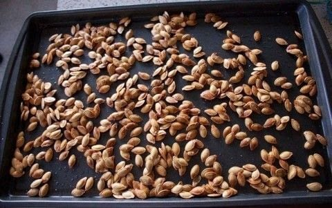 Delicious and simple pumpkin seed recipe!  .  Free tutorial with pictures on how to make a seed in under 45 minutes by cooking with pumpkin, kosher salt, and olive oil. Recipe posted by MagicalGirlMaya.  in the Recipes section Difficulty: Easy. Cost: Absolutley free. Steps: 3