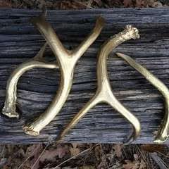 Gold Antlers Diy