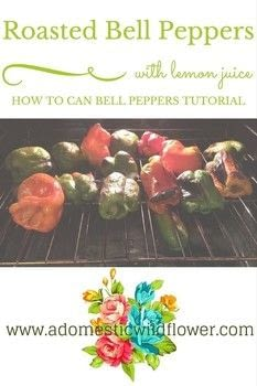 Can Roasted Bell Peppers  .  Free tutorial with pictures on how to cook a vegetable dish in under 180 minutes by cooking and  with peppers, lemon juice, and white vinegar. Recipe posted by adwildflower.  in the Recipes section Difficulty: Easy. Cost: No cost. Steps: 3