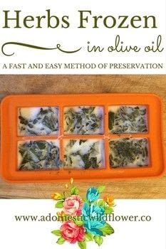 Save herbs in olive by freezing! .  Free tutorial with pictures on how to make a herb in under 10 minutes by  with fresh herbs, olive oil, and ice cube tray. Recipe posted by adwildflower.  in the Recipes section Difficulty: Easy. Cost: Absolutley free. Steps: 3