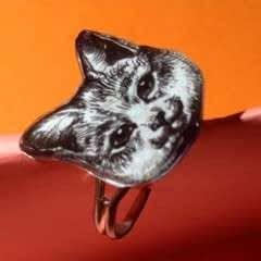 Shrink Plastic Cat Illustration Ring