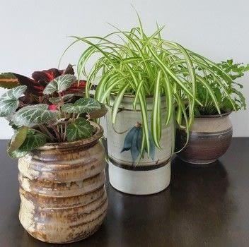 Simple & cheap plant pots! .  Free tutorial with pictures on how to make a vase, pot or planter in under 60 minutes using ceramic, drill, and potting mix. How To posted by Alana S.  in the Decorating section Difficulty: Easy. Cost: Absolutley free. Steps: 3