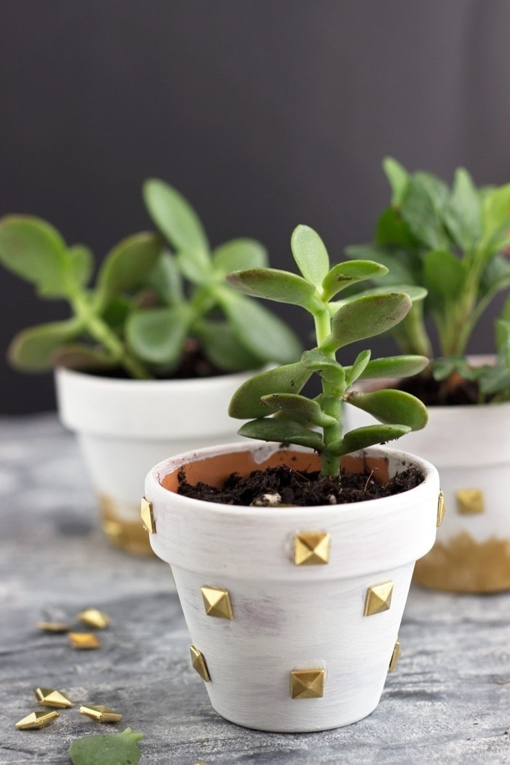 Diy Studded Mini Planters 183 How To Make A Vase Pot Or