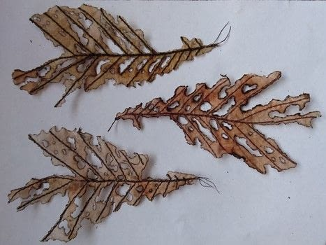 How to Sew an Autumn Leaf .  Free tutorial with pictures on how to embroider art in under 7 minutes using fabric, sewing machine, and tea bag. How To posted by CraftJitsu.  in the Needlework section Difficulty: Easy. Cost: Cheap. Steps: 1