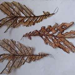 Autumn Leaf Craft Project