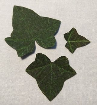 How to Make an Ivy Leaf .  Free tutorial with pictures on how to embroider art in under 3 minutes using acrylic paint and vilene. How To posted by CraftJitsu.  in the Needlework section Difficulty: Easy. Cost: Absolutley free. Steps: 1