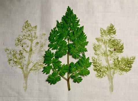 How to Make Hammered Leaves .  Free tutorial with pictures on how to embroider art in under 4 minutes using paper and fabrics. How To posted by CraftJitsu.  in the Needlework section Difficulty: Easy. Cost: Absolutley free. Steps: 1