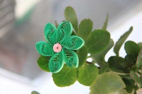 A green blossom, quilled work .  Fold a piece of quilled art in under 45 minutes using strips and glue. Inspired by flowers and green. Creation posted by caittylee c.  in the Papercraft section Difficulty: Simple. Cost: Absolutley free.