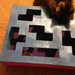 Cat Toy Puzzle Box
