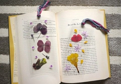 Diy pressed flower laminated bookmarks how to make a bookmark create your own beautiful pressed flower bookmarks that will last a lifetime thanks to some handy mightylinksfo