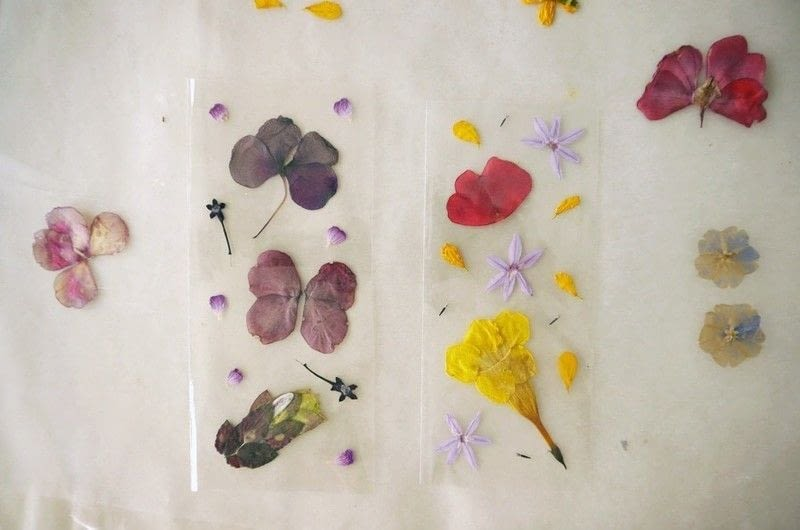 Diy pressed flower laminated bookmarks · how to make a